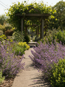 Purple and pink flowers adorn a garden path