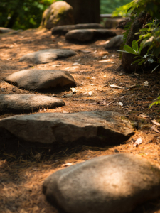 Pathway marked with stepping stones