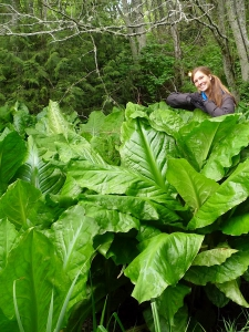 Continuing Studies facilitator, Abe Lloyd, shares his exploits and culinary treats with one of the edible stars of Royal Roads: skunk cabbage!