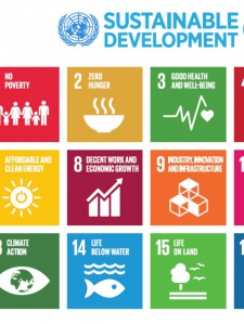 Global Sustainable Development Goals