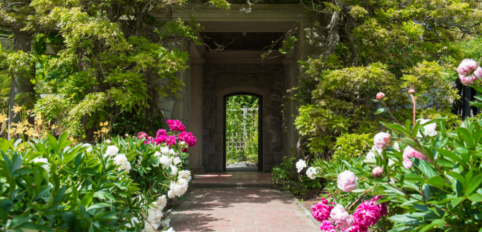pink and white flowers flank a garden path