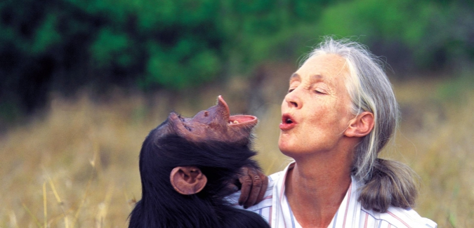 Continuing Studies welcomes Dr. Jane Goodall