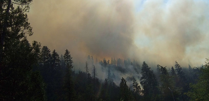 BC wildfires and how to help